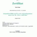 Augenakupunktur_UDH2012